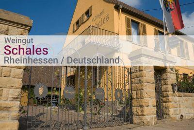 Weinpaket Weingut Schales - Südliches Wonnegau