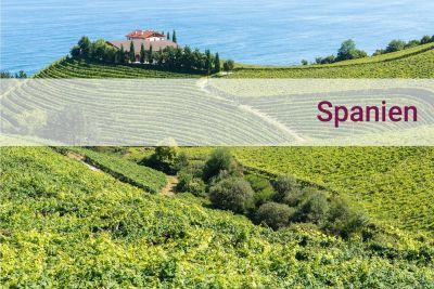 Spanien entdecken - Urlaub zu Hause