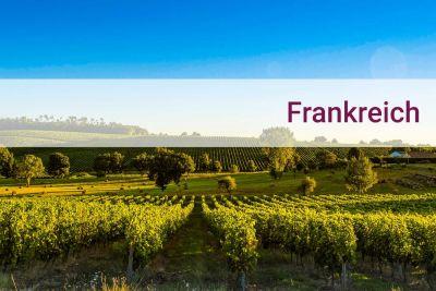 Weinpaket Frankreich entdecken - Savoir vivre