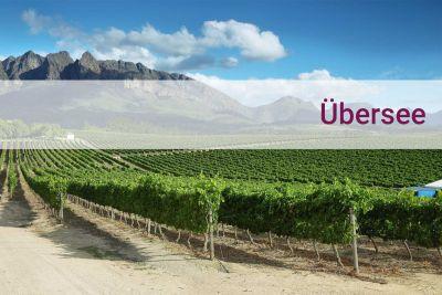 Weinpaket Weine aus Übersee