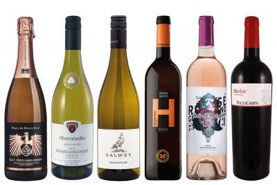 """Weinpaket Online-Weinprobe 1 - 08.04.2020 """"Viel Spaß im Glas"""""""