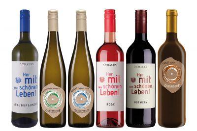 Weinpaket Rheinhessen entdecken