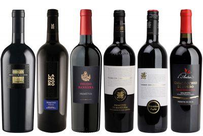 Weinpaket Primitivo - Rotweine aus Apulien