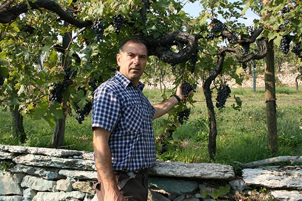Weingut Stefan Accordini Wein Valpolicella Venetien Winzer Italien