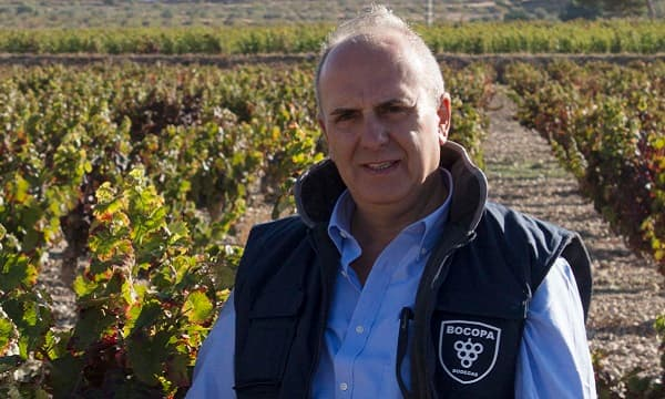 Weingut Bodegas Bocopa Wein Alicante Winzer Spanien