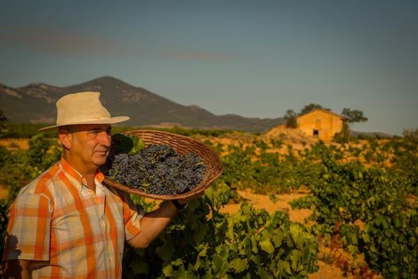 Weingut Care Bodegas Anadas Spanien Carinena Winzer