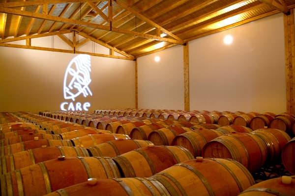 Weingut Care Bodegas Anadas Spanien Carinena Weinkeller