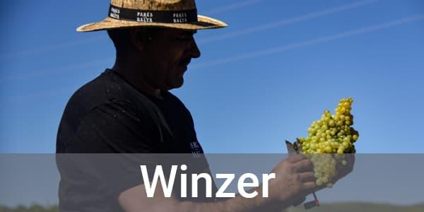 Entdeckerpakete nach Winzer