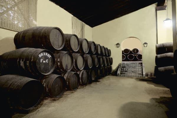 Weingut Bodegas Rey Fernando de Castilla Wein Jerez Winzer Spanien