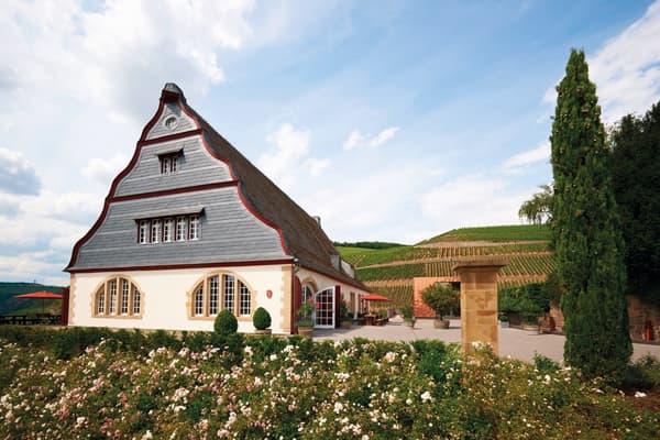 Weingut Gut Hermannsberg Wein Nahe Winzer Deutschland