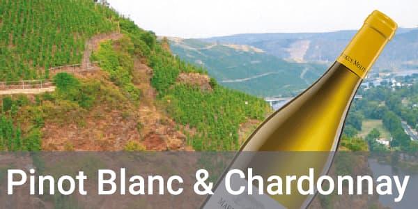 Weingut Markus Molitor Pinot Blanc Weißweine Chardonnay Weißweine