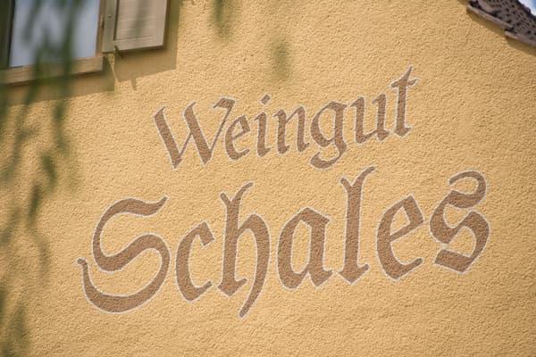 Weingut Schales Wein Rheinhessen Winzer Deutschland