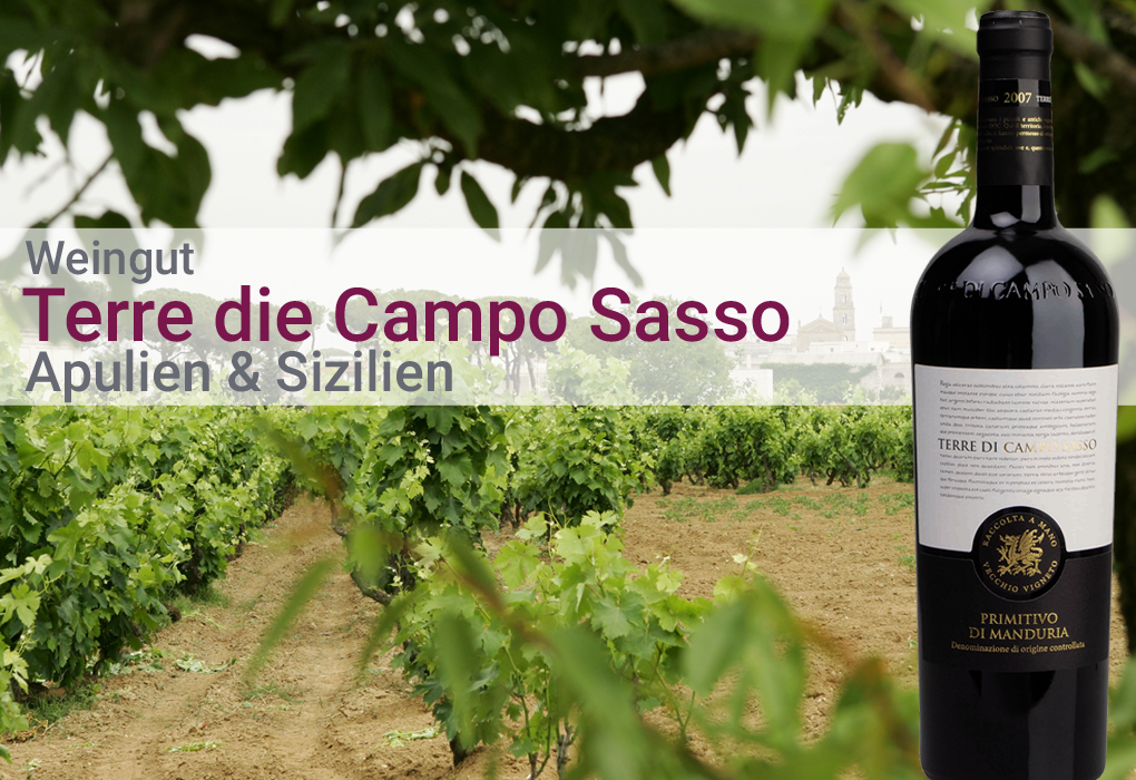 Weingut Terre di Campo Sasso Italien Apulien Sizilien Weißwein Rotwein trocken