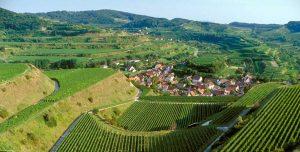 Weinregion Baden / Deutschland